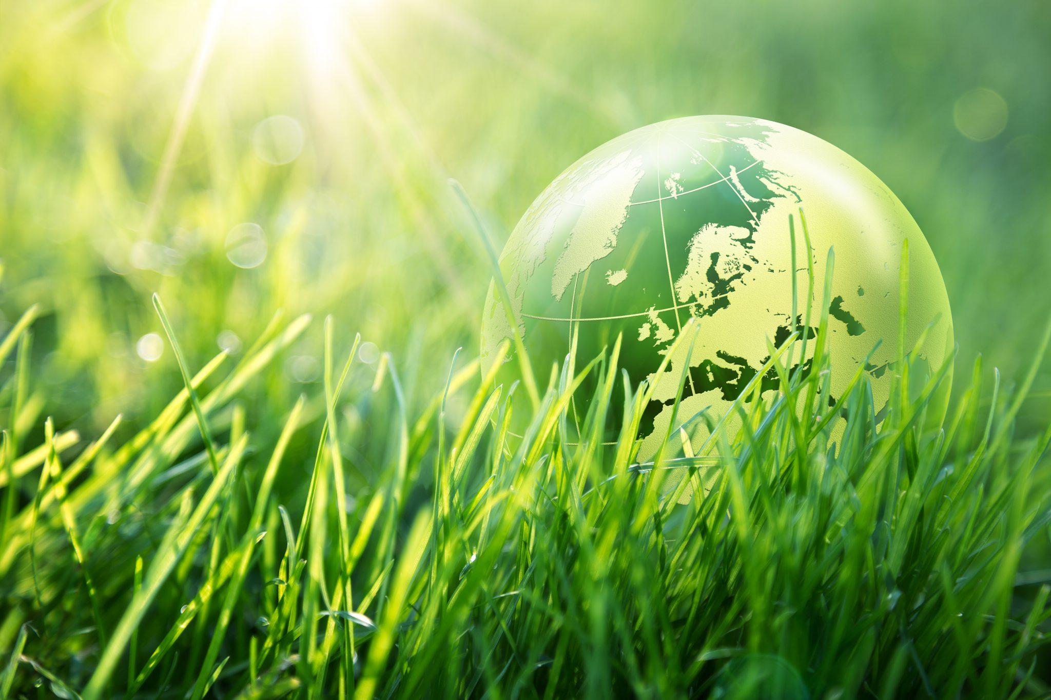 bigstock-world-environmental-concept-E-85859663